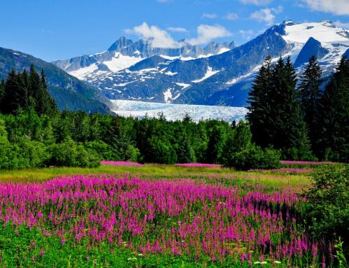 Alaska Land & Sea 2022