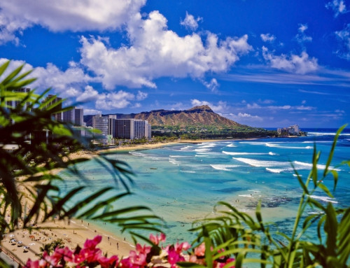 Hawaii Cruise & Land Tour- March 2022