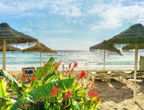 Costa Del Sol, Spain – March 2022